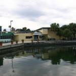 Port Paradise