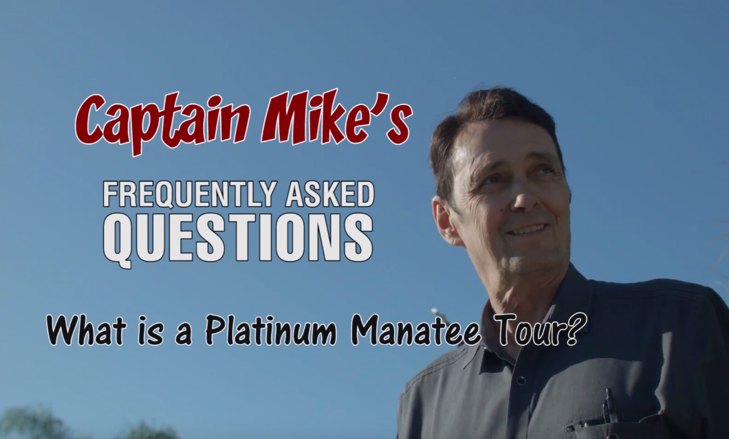 What is a Platinum Manatee Tour – Captain Mike's FAQ's