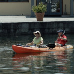 Proper Etiquette for Kayaking Around Manatees