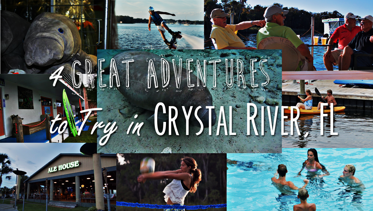 4 Great Adventures to Try in Crystal River, FL