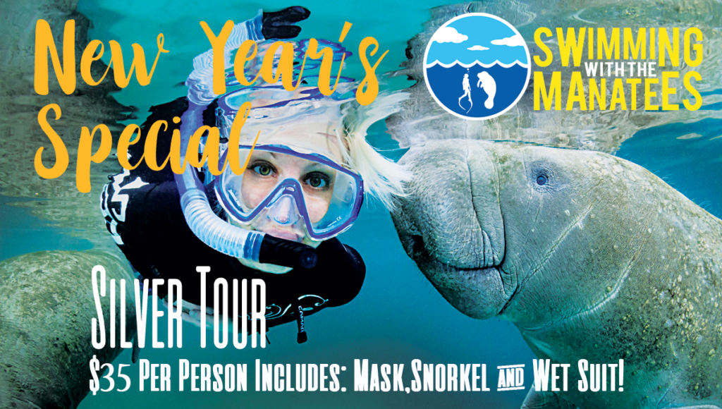 New Year Special - Manatee Tour