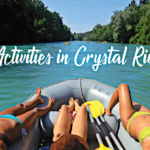 Fun Activities in Crystal River Fl