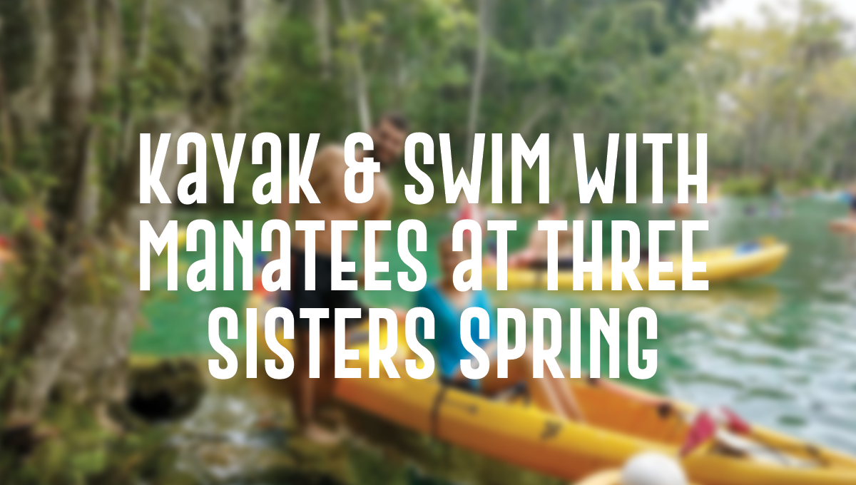 Kayak & Swim with Manatees at Three Sisters Spring