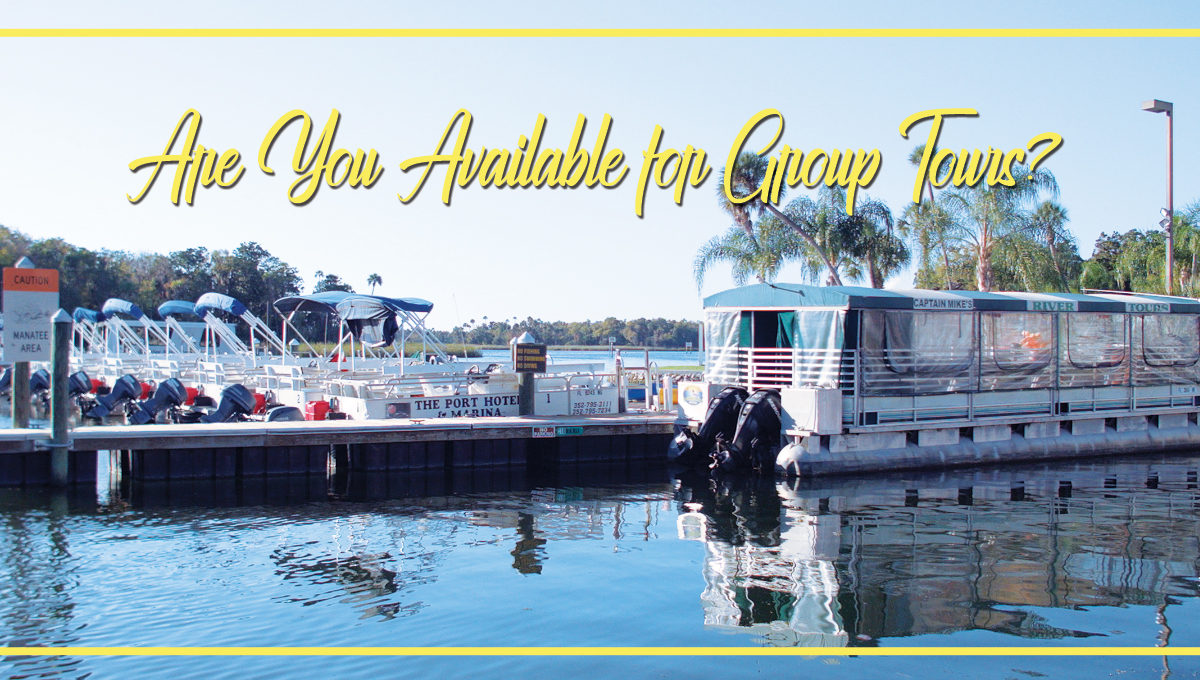 Are You Available for Group Tours?