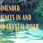 Recommended Experiences In and Around Crystal River